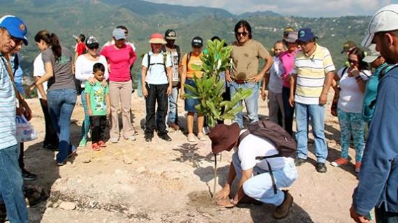 Campaña con la comunidad para abonar árboles en el Cerro de la Bandera