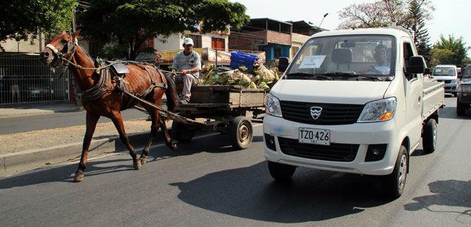 Continúa el proceso de sustitución de vehículos de tracción animal