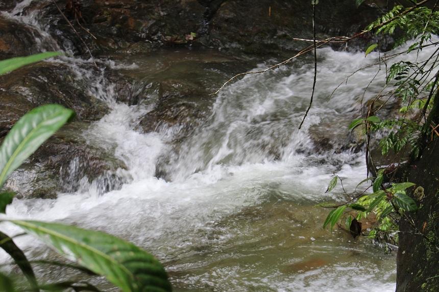 En busca de un río que Cali se tragó