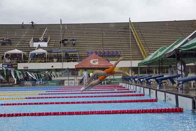 Copa Latina de natación