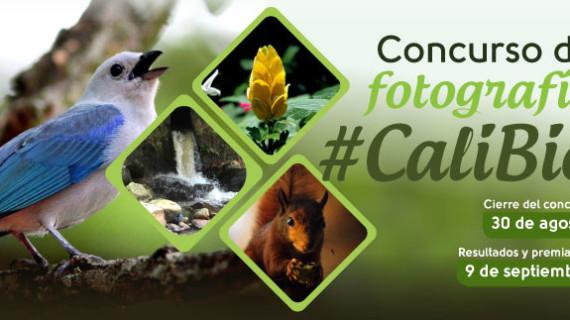 Concurso de fotografía natural #CaliBio