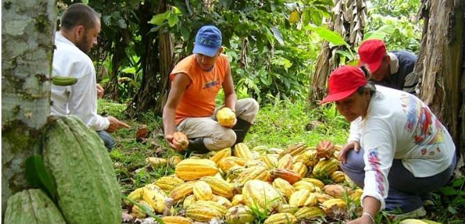 El Valle cuenta con plan de seguridad alimentaria actualizado