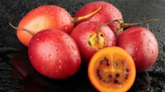 Residuos de tomate de árbol alargan vida útil de la carne