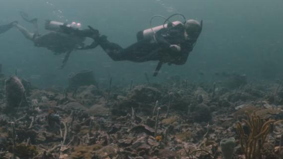 Atípico arrecife de coral colombiano fue documentado en serie de la Oregon State University