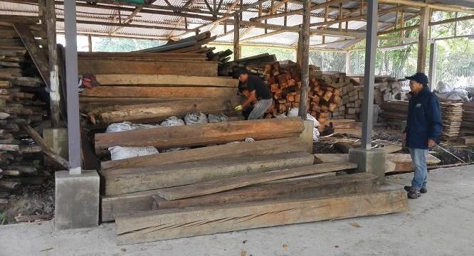 Con madera decomisada repararán daños por invierno