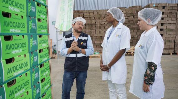Plan piloto para exportar productos agrícolas del Valle
