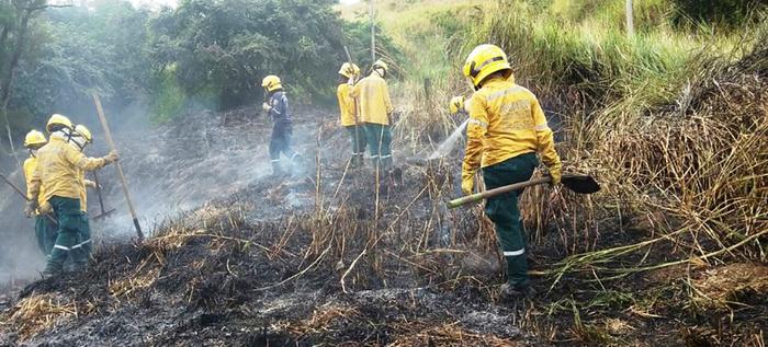 Comunidad debe atender recomendaciones en caso de incendios forestales