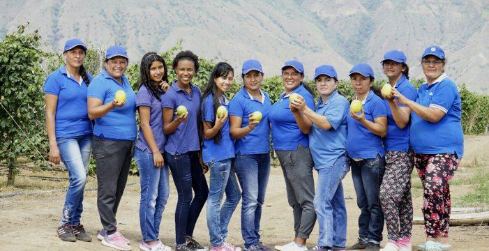 Gobierno departamental ha empoderado a 200 asociaciones de mujeres campesinas con incentivos e insumos