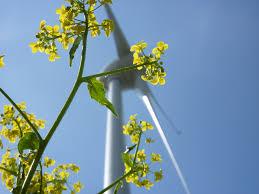 Segundo congreso nacional de bioenergía BI-ON 2018: la revolución de la energía