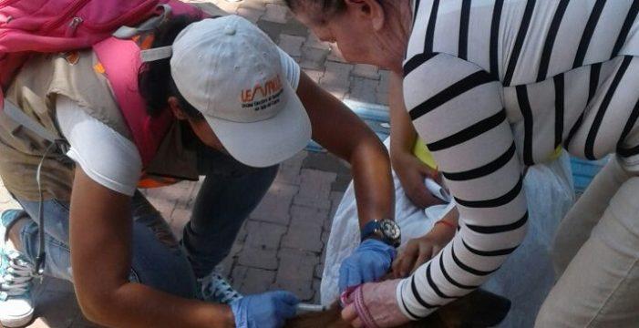 UESVALLE incrementó acciones en la salud de los vallecaucanos en el 2017