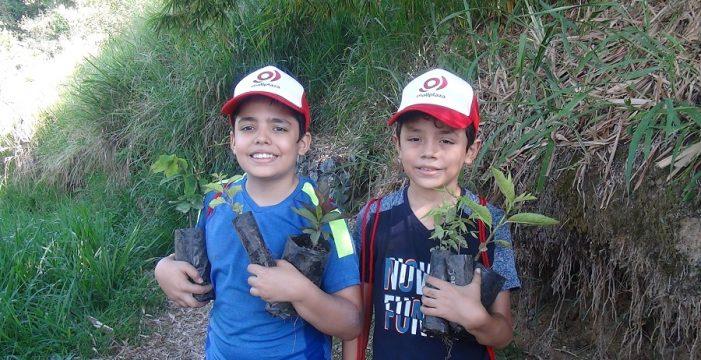 Más de 250 personas participaron de la siembra voluntaria de Mallplaza Cali en el Ecoparque De la Vida