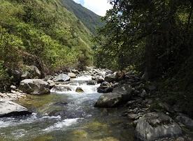 Parque Providencia suma 414hectáreas a la conservación del Valle del Cauca