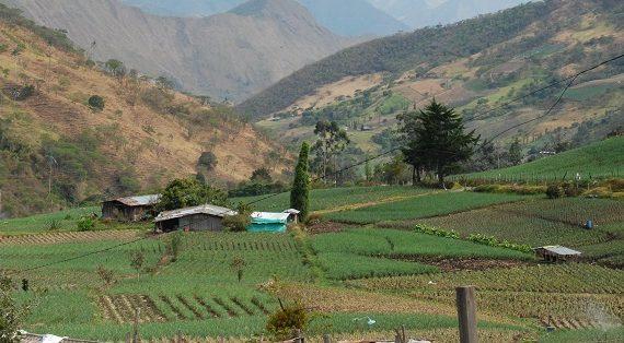 Preforos educativos en municipios preparatorios del foro departamental sobre educación rural