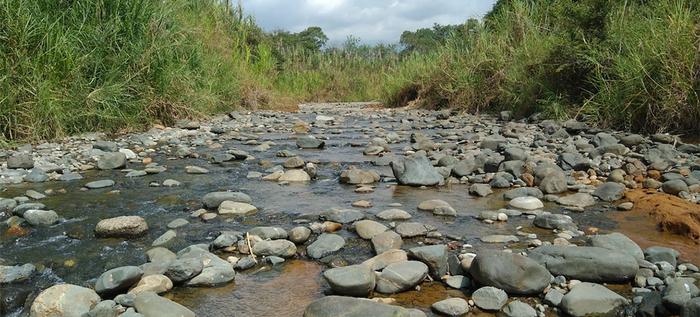Dagma celebra decisión de la CVC de suspender trabajos de extracción en el río Pance
