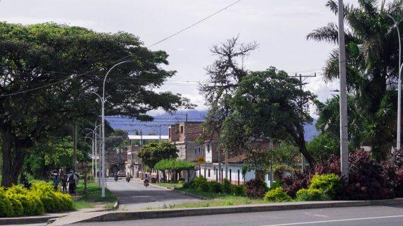 Cinco municipios del Valle libres de minas antipersonas