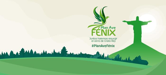 Así avanza el plan Ave Fénix