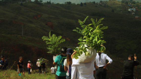Una cita para sembrar en el Cerro