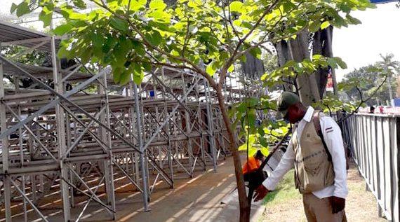 Dagma verificó buen estado de los árboles tras primer día de la Feria de Cali