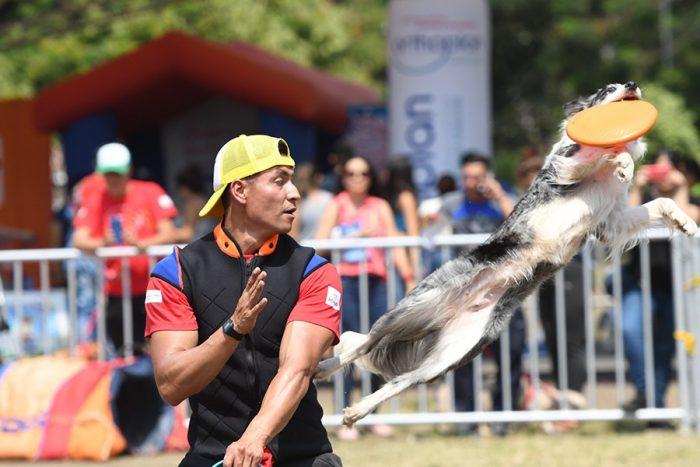Las mascotas le pusieron alegría a la Feria de Cali