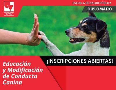 Diplomado en Educación y Modificación de Conducta Canina