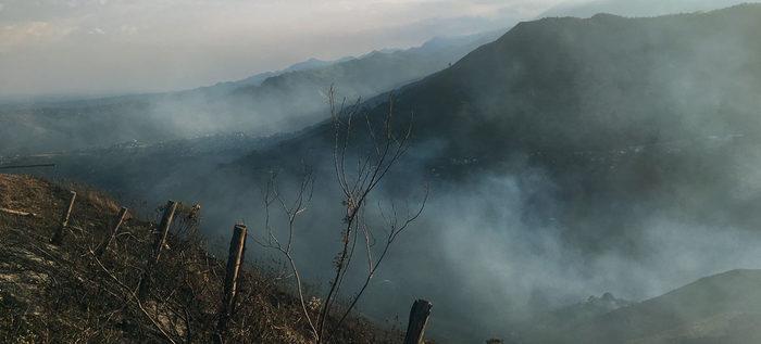 Manos criminales estarían tras el incendio forestal en La Castilla
