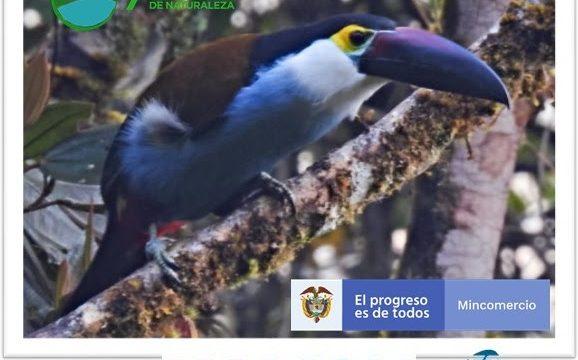 Vallecaucanos unidos por el Turismo de Naturaleza