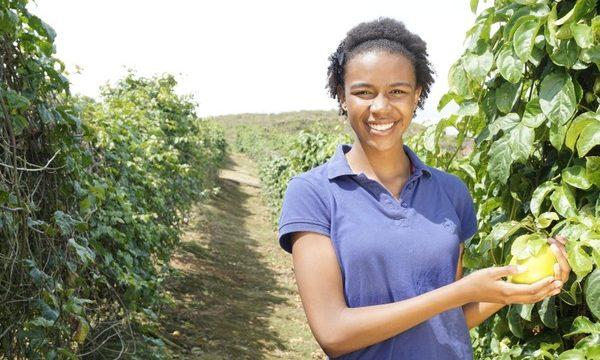 Fortalecen proyectos productivos de campesinos que ya venden en grandes superficies