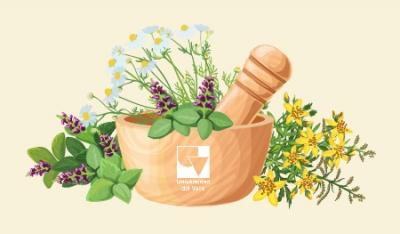 Plantas medicinales: una tradición con efectos secundarios