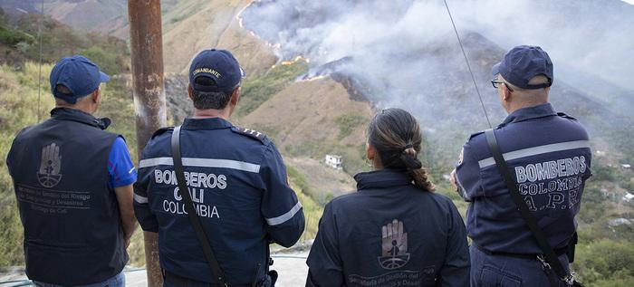 Llamado a prevenir incendios forestales