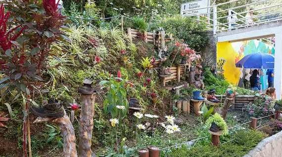 Un jardín donde florecen los zapatos