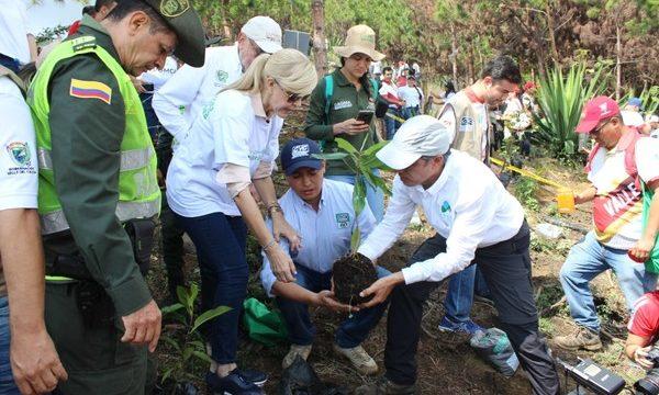 Este sábado se realizará la segunda jornada de siembra para la recuperación de los cerros de Dapa