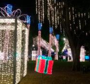 Desde este viernes se enciende la 'Navidad en mi Cali Bonita'