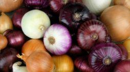 Alimentos naturales para fortalecer el sistema inmunológico