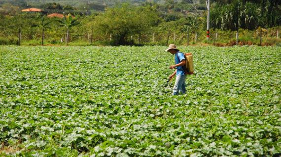 Reactivar la economía del Valle del Cauca a corto y mediano plazo, la meta del Plan de Desarrollo 2020-2023
