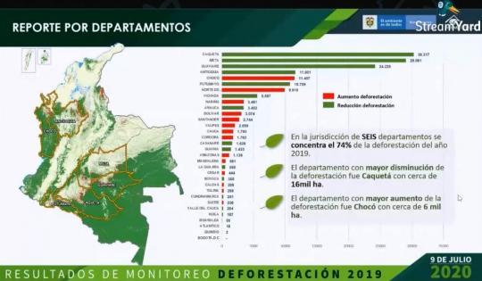 Deforestación sigue disminuyendo en el Valle, según en Ideam