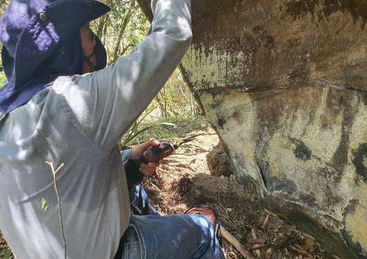 Inciva investigará petroglifos hallados en zona montañosa de Bolívar