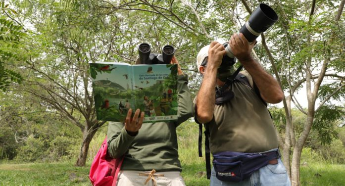 Con éxito culmina la VI edición del censo urbano de aves en Cali
